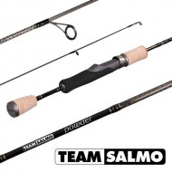 Спиннинг Team SALMO Powder